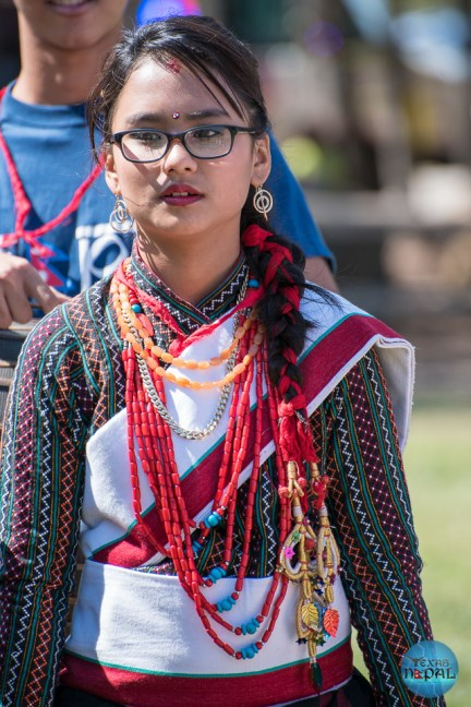 Indra Jatra Celebration 2015 Texas - Photo 75