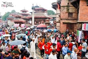 gai-jatra-festival-kathmandu-2069-27