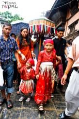 gai-jatra-festival-kathmandu-2069-3