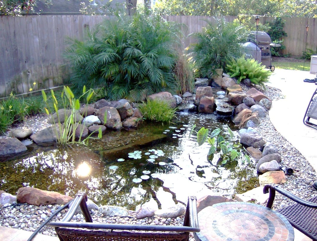 Small Backyard Koi Pond