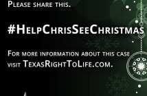 Help%2520Chris%2520See%2520Christmas%2520%2528general%2529%2520-%25201%2520B