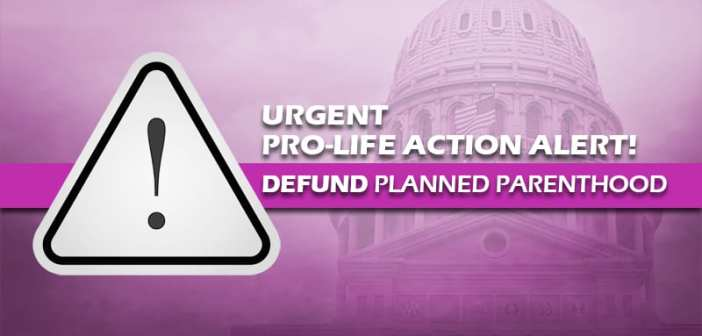 Conference Committee on the state's budget eliminates essential Pro-Life victories; CALL NOW
