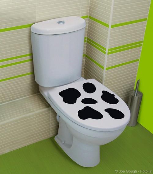 Διακόσμηση τουαλέτας με βινυλικά αυτοκόλλητα