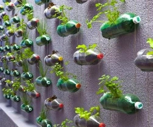 κήπος από πλαστικά μπουκάλια