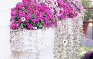 Διακόσμηση με λουλούδια, 35 Πράσινες Ιδέες για όμορφα μπαλκόνια