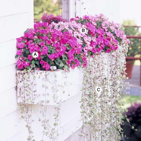 Διακόσμηση μπαλκονιού με λουλούδια24