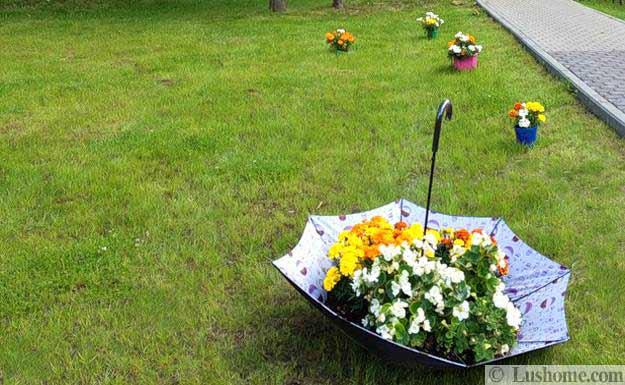 ασυνήθιστα δοχεία και γλάστρες για λουλούδια