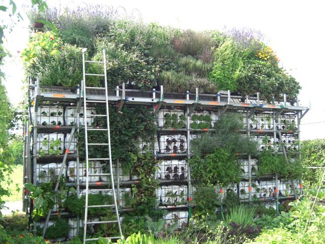 eathouse μια ιδέα κήπου σε μορφή σπιτιού7