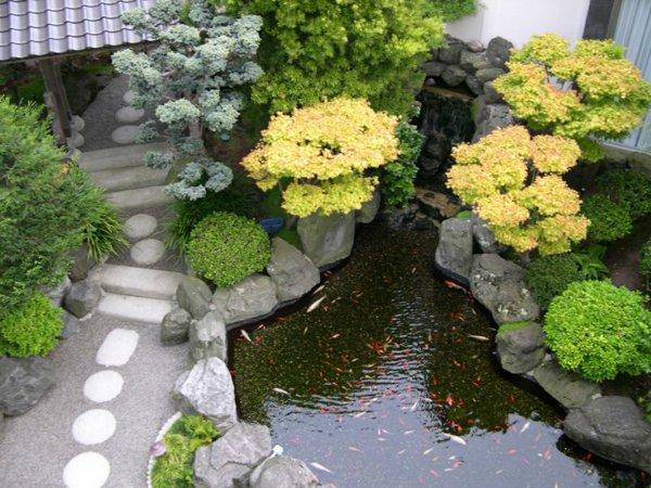 φυτογραφίες για το σχεδιασμό κήπων46