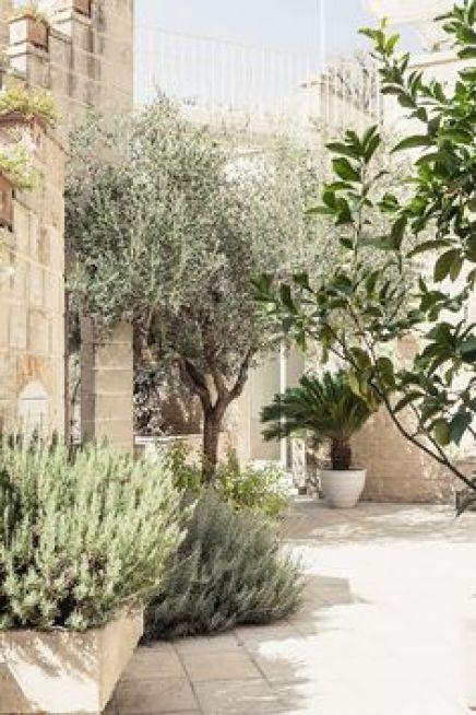 Μεσογειακός κήπος ιδέες66