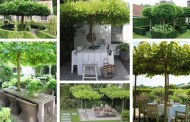 42 Απίθανες ιδέες με φυσικές πέργκολες στον κήπο, και πώς οργανώνουμε το χώρο γύρω από τα δέντρα