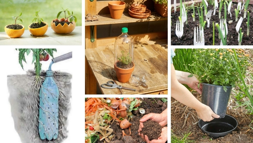 Έξυπνα και δημιουργικά κόλπα και συμβουλές κηπουρικής - κήπου που κάθε κηπουρός πρέπει να γνωρίζει