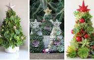 Η πιο πρόσφατη viral τάση Χριστουγέννων: DIY χριστουγεννιάτικα δέντρα από παχύφυτα