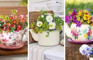 Φύτευση σε παλιά σερβίτσια τσαγιού: 20 Ιδέες για να δημιουργήσετε έναν καταπληκτικό μίνι κήπο σε φλιτζάνια και τσαγιέρες