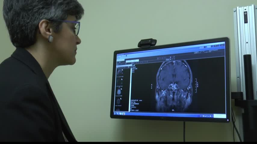 Health Cast- Pituitary Gland Research_40613356