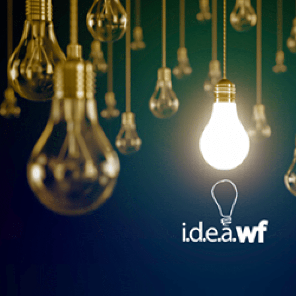 IDEA WF2_1556303946418.png.jpg