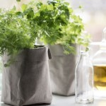 Texon Vogue washable paper plant bags in grey