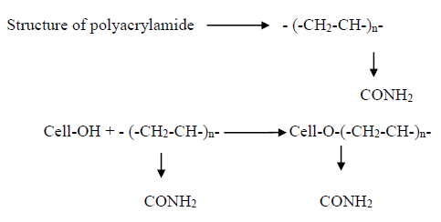 Structure of polyacrylamide