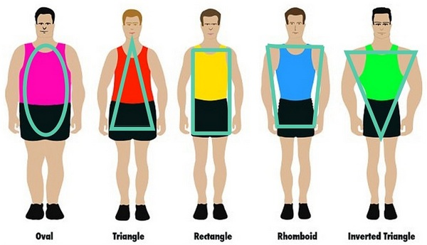 Male body shapes