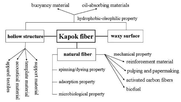 Representative relationship between structure, properties, and applications for kapok fiber