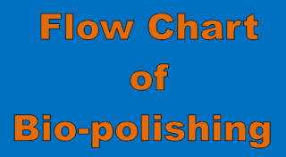 Process Flow Chart of Bio-polishing