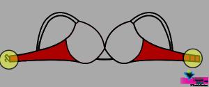 Hook-and-Eye-TextileStudent.com