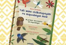 Diccionario infantil de mapudungun de Nieves Garmendia
