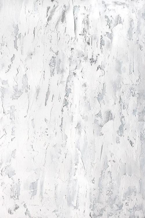 white grey backdrop