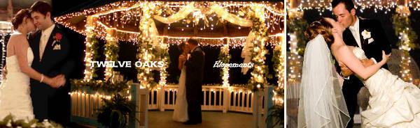Honeymoon Inclusive Inexpensive All