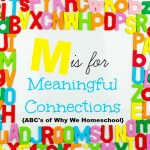 ABCs of Why We Homeschool I M is for Meaningful Connections TFHSM