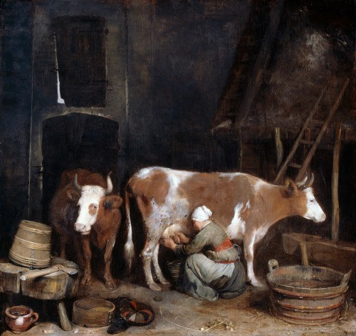 Gerad ter Borch farm painting girl milking cow in a barn