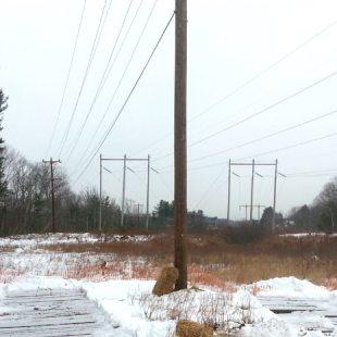 PSNH   32W5 Distribution Line Project