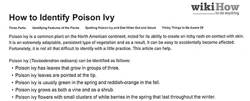 Poison Ivy Safety Tips