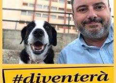 """Diventerà Bellissima, si dimette Arialdo Giammusso: """"da Falcone troppi atteggiamenti benevoli in consiglio comunale"""""""