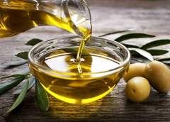 Agricoltura. Catanzaro: al fianco dei produttori per tutelare l'olio siciliano