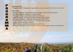 Il Recovery Plan e la governance, l'ultima opportunità per la Sicilia per il futuro dei nostri giovani. Tre incontri online organizzati dal polo Civico Cives 3.0