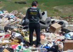 """Riforma della giustizia, appello di Wwf Sicilia centrale alla deputazione nissena ed ennese """"no al colpo di spugna per i reati ambientali"""""""