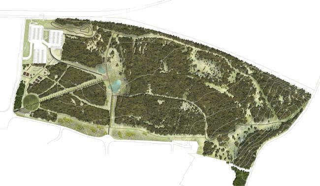 Landscape Plan Hallside