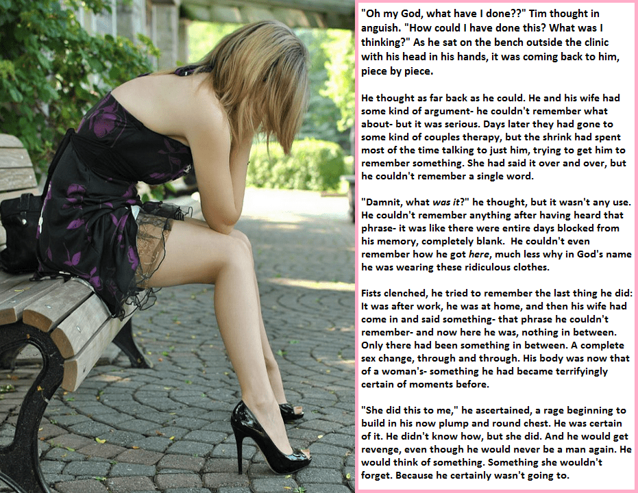 The Right Woman !! - TG Transformation Stories