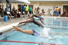 The start of the Girls 7-8 25M freestyle race.