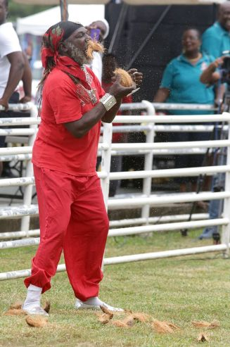 Apart from his interesting balancing skills Samuel Cudjoe also showed he could husk a dry coconut with his teeth as part of the afternoon's entertainment between races.