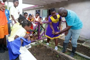Tobago Agricultural Society president Micheson Neptune, right, guides Mason Hall Y-Zone Police Youth Club member Shannel Rogers on how to plant seedlings in the Y-Zone's agri-beds at the launch.