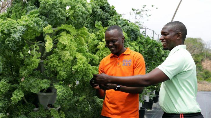 Chief Secretary visits Mason Hall farms