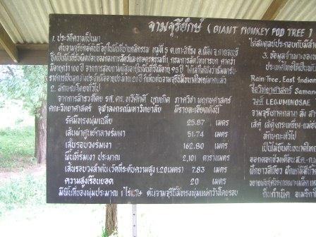 www.thai-dk.dk/uploads/P8083446.JPG