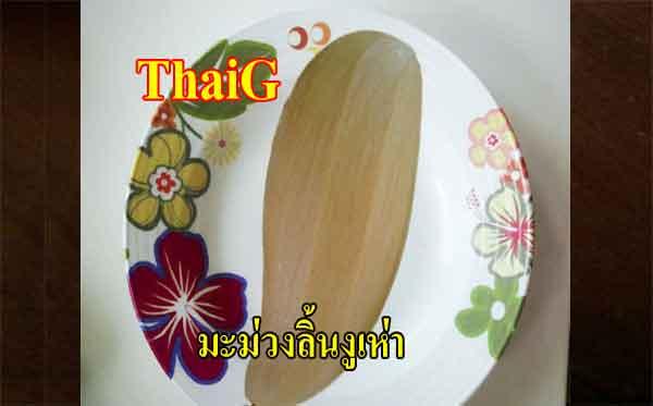ขาย ต้นมะม่วงลิ้นงูเห่า มะม่วงพันธุ์โบราณไทย