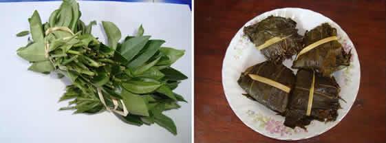 タイの茶葉の漬物「ミアン」は苦くて清涼感ある嗜好品【TVウォッチング】