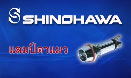 SHINOHAWA: แลมป์ตาแมว LED