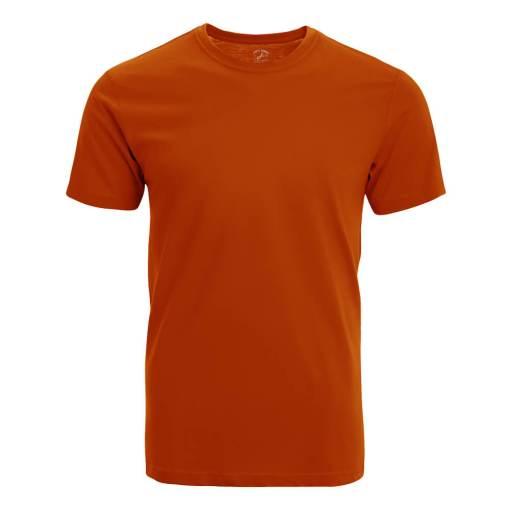 เสื้อยืดคอกลม แขนสั้น 2551_OR_F