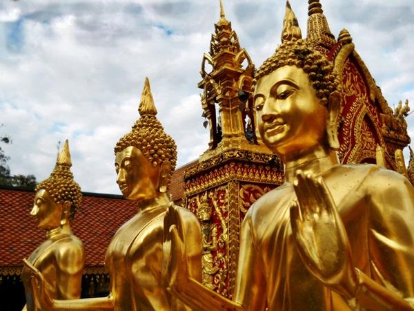 chiangmaibuddhas