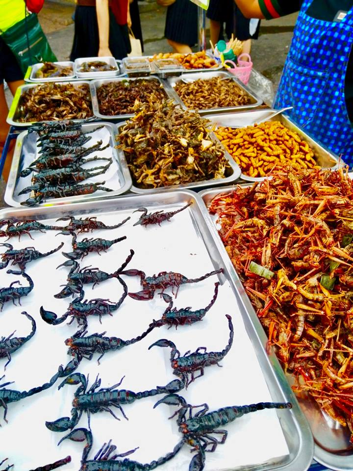 scorpions for sale to eat in khao san road bangkok